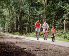 RCN-de-Jagerstee-Vakantiepark-Veluwe-fietsen-in-bos (3)